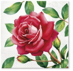 "Serviette ""rote Rose"""